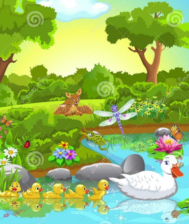Pond Animals